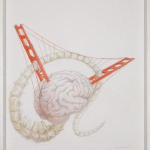 Bd Brain Bones Bridge, dessin pre ́paratoire 1, 65x50cm