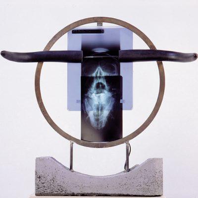 bd 2002, Quand le minotaure crie !, acier, clichés radio, résine polyester, béton, 64x64x20cm