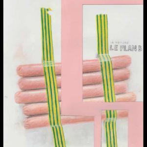 La nature, le plan B, technique mixte sur papier, 29,7 x 21 cm, 2017