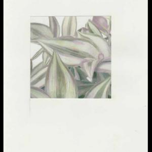 Misère (détail), technique mixte sur papier, 29,7 x 21 cm, 2017