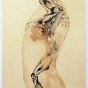 M. Fritchi-Roux - Paysan Lycien - Encre et brou de noix sur papier huilé 1 -110x75cm