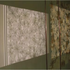 Voiles & Ombres Alep était florissante 1402, 2014, installation, dentelle de feuilles-nervures