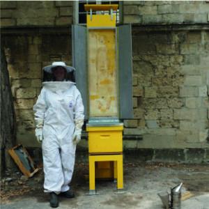 Risque d'exposition, Béziers 2020, sculpture-live sur dessin par les abeilles