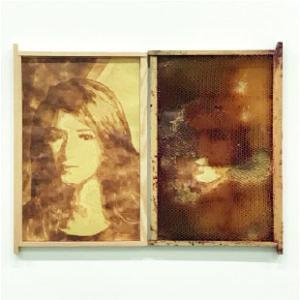 Zineb El Rhazoui 2019, jus de citron, cire, cadre de corps, 47 x 60 cm